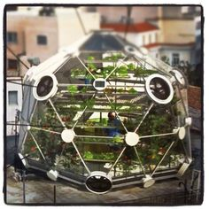 ideal for urban garden or rooftop growing... the gorgeous Globe (Hedron) geodesic greenhouse by Conceptual Devices and UrbanFarmers