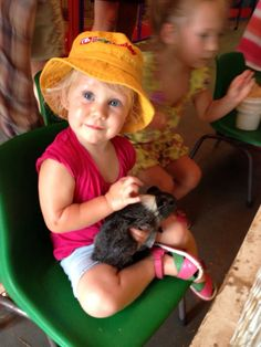 Cuddly Animal Farm Perth, Swan Valley - Blog | - The largest FREE online family guide and community in WA