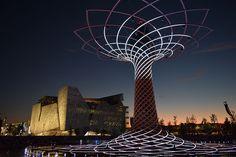 The Tree of Life. The colours of Expo Milan 2015 #raiexpo #expo2015 #worldsfair #milan #italy #treeoflife #alberodellavita #colours #life #sunset