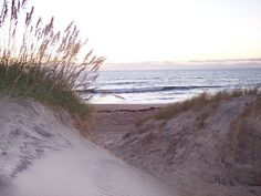 On the dunes of the Cape!       ~ Sand dunes, Outer Banks, NC