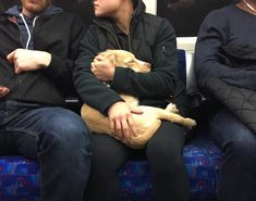Hush little baby don't say a word. Found them in a train in London http://ift.tt/2fvVbvs