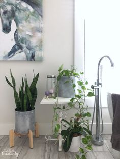 Use this easy paint technique to create DIY galvanized metal planters. Add the perfect touch to your farmhouse style home. Upcycled Home Decor, Easy Home Decor, Christmas Popcorn Tins, Christmas Ideas, Metal Planters, Galvanized Metal, Do It Yourself Home, Easy Paintings, Painting Techniques