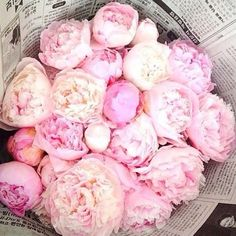 Nothing could be prettier than a bouquet of peonies