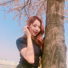 ✿  〖170412 || © Twitter〗  NAYOUNG Twitter Update!    TRANS : The weather is so good~ A snap of Nana with cherry blossom flowers! How is it?  trans © LadyTeenIntl ✨  ㅡ  [#Nayoung #나영]  ㅡ  [#Pledis #PledisGirlz #프리스틴 #Pristin #WEE_WOO]