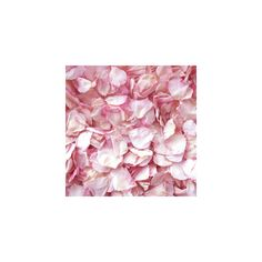 ❤ liked on Polyvore featuring backgrounds, flowers, pictures, wallpaper, pink, phrase, filler, quotes, saying and text
