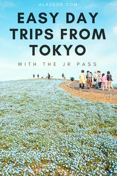 Make the most of your trip to Japan, no matter how long you're staying with these easy day trips from Tokyo. Whether you have one week in Japan or one month, the JR pass makes it easy to get around and see some of the best attractions in Japan. Here are just some of the best Japan day trips from Tokyo with the Japan Rail pass. Travel in Japan is easy when you have it, even if you only have a short time to explore the country. #japan #japantravel #japantips #tokyodaytrips #tokyo #japanrail