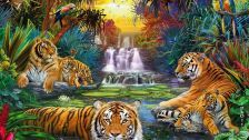In the jungle parrots cubs painting tigers