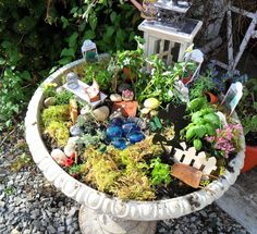 """This is my """"fairie herb garden""""..basil, curly parsley, sage and dill....right at mt front door! I used my old bird bath 'cause I have a new one."""
