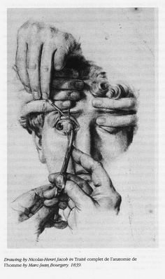 "slobbering: "" Nicolas-Henri Jacob (French, - Drawing in Traité… Anatomy Sketches, Anatomy Art, Art Sketches, Eye Anatomy, Arte Horror, Horror Art, Gravure Illustration, Illustration Art, Medical Drawings"