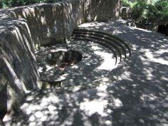 Fort Fremont - Saint Helena Island - Saint Helena Island, St Helena, South Carolina, Bald Eagle, Trip Advisor, Saints, Photos, Animals, Pictures