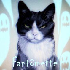 Fantômette as Fantômette / Thérianthropia