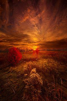 https://flic.kr/p/AUcBXF | Following Your Heart | Autumn sunrise in Wisconsin. Wisconsin Horizons By Phil Koch. phil-koch.artistwebsites.com