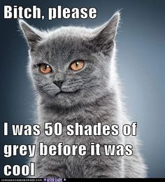 Bitch, please, 50 shades of grey is terrible