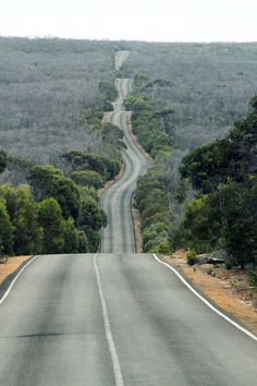 Two wheeled life: being happy with the journey whether or not you can see the path before you. Kangaroo Island road, South Australia. Photo ...