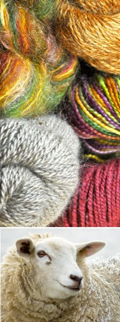 Stitchuary is an exclusive online retailer for knitters to find artisan yarn from independent farms and sheep breeders from across the country. We specialize in bringing knitters limited edition high quality yarns fresh from the farms that produce them. Our yarn selection includes sheep, alpaca, goat, rabbit, and llama, as well as plant fibers that include cotton, linen, hemp or silk.