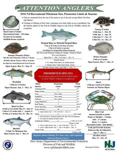 NJ Saltwater Fishing Information,NJ Fishing Forums, NJ Fishing Reports,NJ Surf Fishing Reports, NJ Marine Weather Forecast,Tide Charts,Fishing Pictures, Fishing Tips, Fishing Articles. A Friendly Online Saltwater Fishing Community.