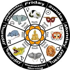 Personal indian astrology reading picture 4