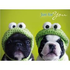 French Bulldog Birthday Card Kermit Frenchie Dog Lovers Greeting Card