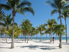 Riviera Maya, Mexico Barcelo Maya Palace Deluxe Go there!! You won't regret it!!