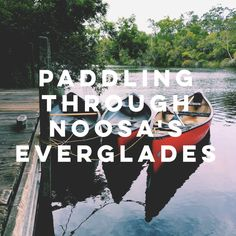 All about the Noosa Everglades Working Holidays, Sunshine Coast, Cairns, East Coast, Travel Guides, Sydney, Road Trip, Around The Worlds, Australia