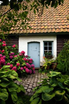 """""""Cottage entrance with hostas (Hosta) and hydrangea (Hydrangea), July"""" byFrancois De Heel on Getty Images."""