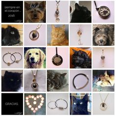 joyas-recuerdo-animal-mascota-siempre-en-el-corazon-2015-mi-miga