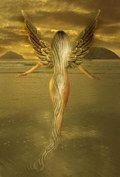 Beautiful blonde angel/fairy walking in water Angel Pictures, Fantasy Pictures, Angels Among Us, Angels And Demons, 3d Fantasy, Fantasy World, Fantasy Fairies, Magical Creatures, Fantasy Creatures