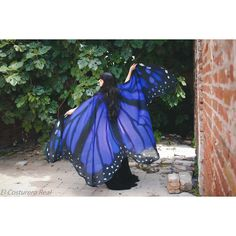 Butterfly Blue Wings Cape Scarf Isis Wings Costume Adult Monarch Fairy... ($223) ❤ liked on Polyvore featuring costumes, grey, women's clothing, adult fairy costume, ladies halloween costumes, fairy costume, blue belly dance costume and adult women costumes