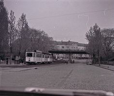 DDR, Rostock, Parkstraße, Straßenbahn, 50er, Foto: Sammlung K. Mauritz