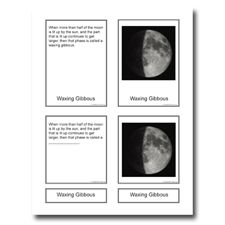 Phases of the moon free printable cards- Harold and the Purple Crayon or Owl Moon