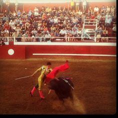 Portuguese Bullfights in Gustine, california