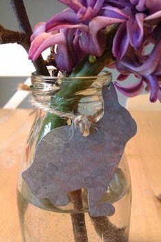 Hyazinthe im Häschenglas
