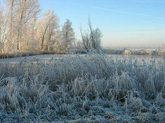 Sint-Laureins in Oost-Vlaanderen, Oost-Vlaanderen