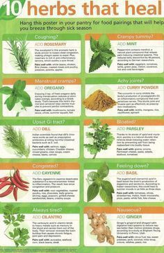 10 #herbs that heal. #Peppermint and #ginger are known for curing upset stomach & #nausea #AnxietyNausea
