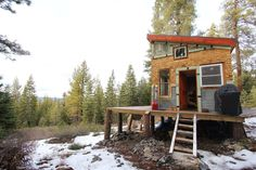 Sometimes I want a cabin in the woods ... Tim and Hannah's Affordable DIY Self-Sustainable Micro Cabin