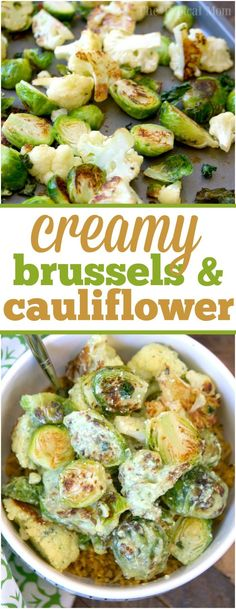 This creamy salsa verde brussel sprouts and cauliflower recipe is a great side dish or vegetarian meal that is packed with punches of flavor! via @thetypicalmom