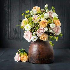 Avelanch Roses