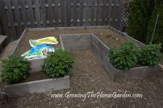 Garden Plans and Ideas: A U Shaped Raised Bed Garden Layout