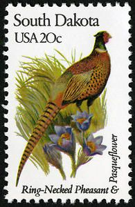 A 1982 twenty cent stamp featuring a ring-necked pheasant and pasqueflower from South Dakota.