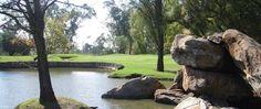Maccauvlei Golf Course. Played August 2012 Public Golf Courses, Best Golf Courses, St Andrews Golf, Coeur D Alene Resort, Augusta Golf, Golf Course Reviews, Coeur D'alene, Photo Galleries, South Africa