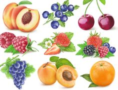 Fruit labels clip art free | For printing we suggest using our Full Sheet Labels – cut each label ...