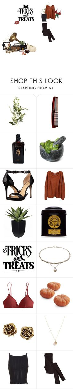 """I literally cant wait for Halloween"" by brendaf123 ❤ liked on Polyvore featuring Pier 1 Imports, Mason Pearson, Kiki de Montparnasse, Fresco Towels, MICHAEL Michael Kors, Vernissage, Mariage Frères, J.Crew, Supersonic and Crate and Barrel"