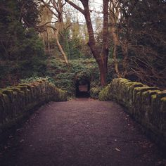 Jesmond Dene Park, Newcastle UK
