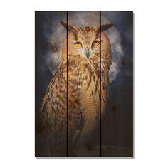 (Black) Owl 16X24-inch Indoor/ Outdoor Full Color Wall Art (16x24)