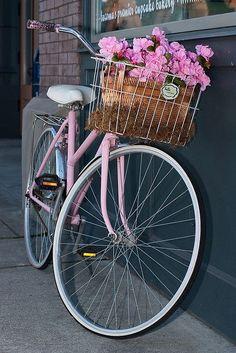 Vintage Bikes & Flowers