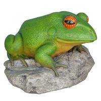 Frog On Rock Statue Large