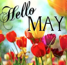 Hello May Good Morning may month good morning may quotes hello may welcome may goodbye april happy may hello may quotes goodbye april hello may first day of may first day of may quotes Seasons Months, Days And Months, May Days, Seasons Of The Year, Months In A Year, 12 Months, Hello May Quotes, Neuer Monat, Darling Buds Of May