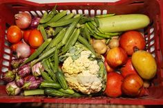 Vegetables and fruits in a red plastic box