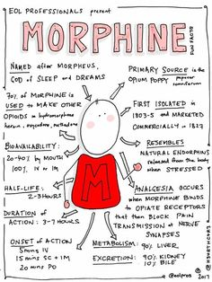 Morphine infographic Morphine not good when trying to reduce liver toxicity. Med Surg Nursing, Oncology Nursing, Pharmacology Nursing, Ob Nursing, Nursing Degree, Nursing Schools Near Me, Nursing School Notes, Nursing Students, Medical Students