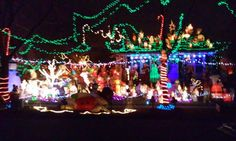 """""""The neighbor puts out so many beautiful lights, he stops traffic because everyone stops to see them."""" City: Lincoln park 
